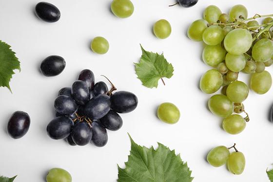 Gyümölcsdarálók, a hatékony feldolgozás eszközei!