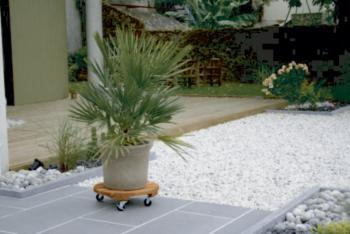 https://www.prenker.hu/media_ws/10002/2066/idx/intermas-flora-roll-lasure-lakkozott-kemenyfa-viragalatet-0-4-m-1.jpg