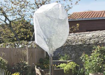 Wintertex 50 nem szőtt textília növények fagykár elleni védelmére 1,6 x 10 m Kép